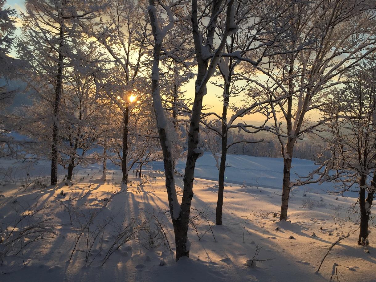 Hokkaido Japan Sonnentag c Bernhard Krieger