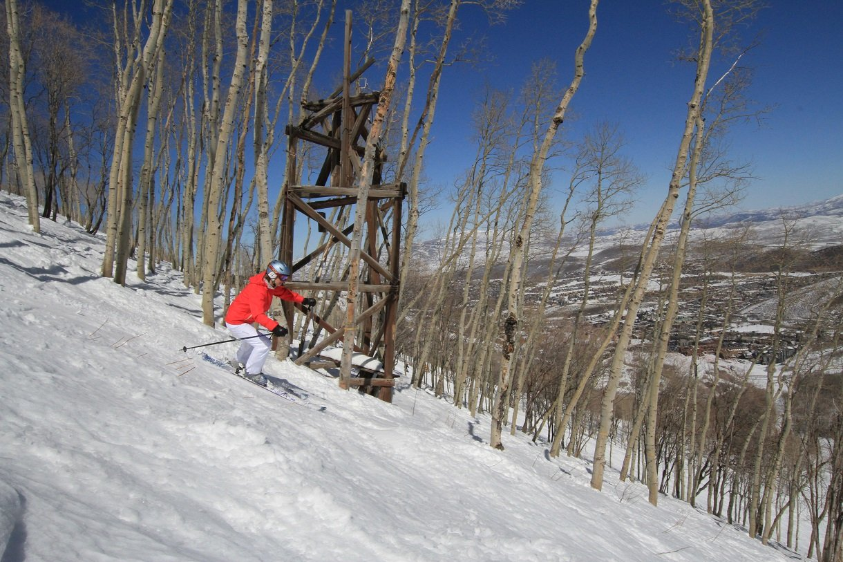 Park City Tree c Bernhard Krieger